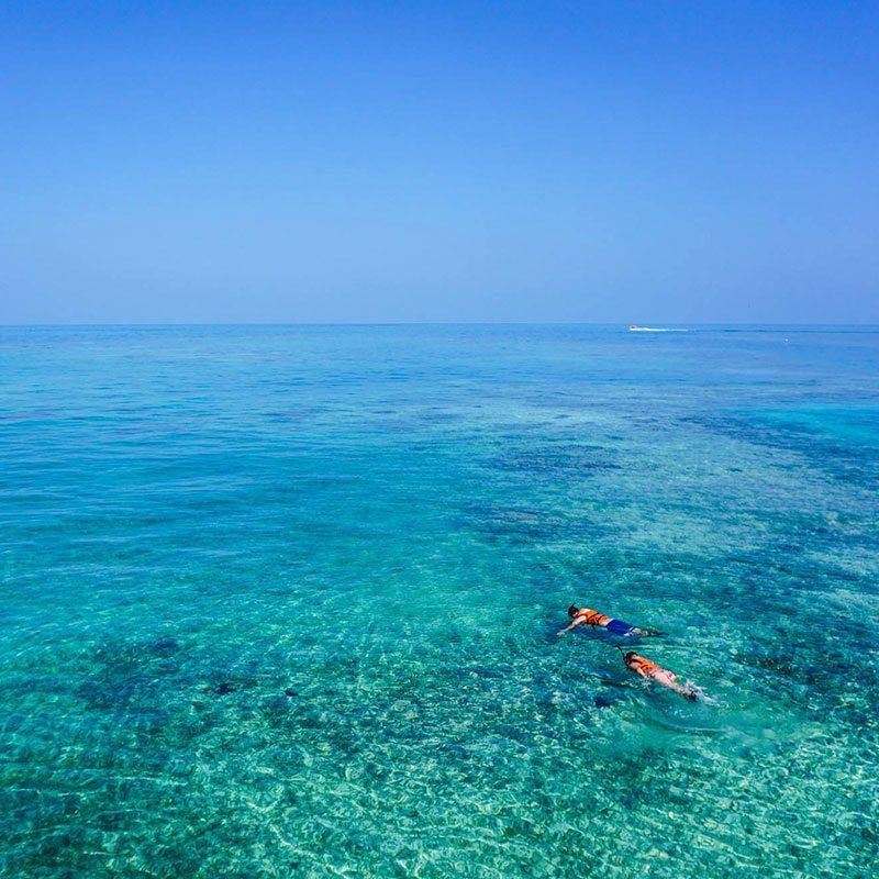 Snorkeling trip in blue clear waters in the Atlantic Ocean.
